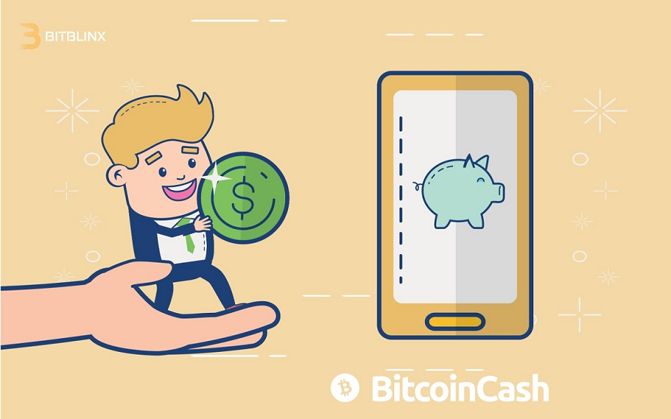 Bitcoin Cash Explained, what is it?
